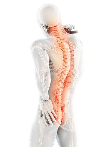 Masaż leczniczy i relaksacyjny przy bólu i przeciążeniach kręgosłupa Konstancin-Jeziorna oferta